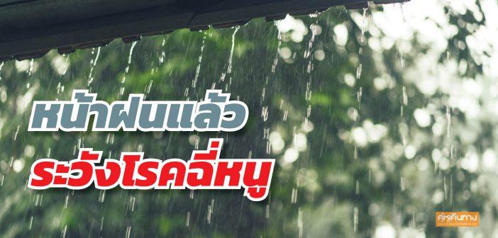 หน้าฝนแล้ว ระวังโรคฉี่หนู
